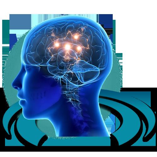 МРТ диагностика болезни Паркинсона