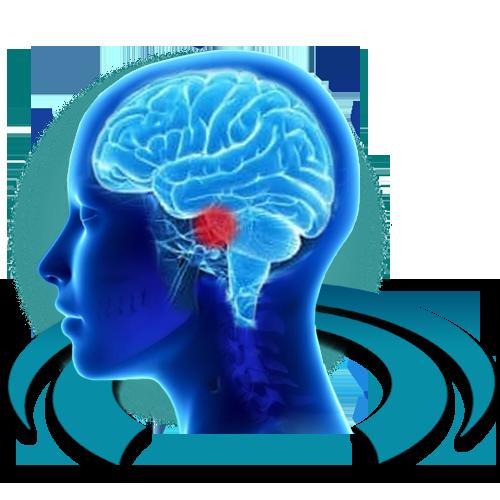 МРТ головного мозга на нейроваскулярный конфликт