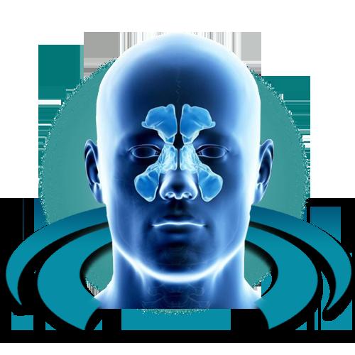 МРТ придаточных (околоносовых) пазух