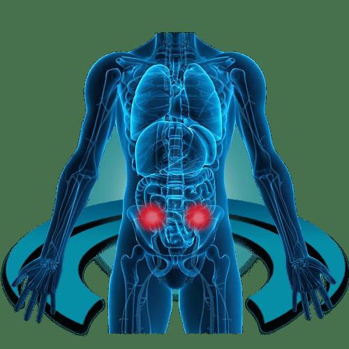 МРТ крестцово-подвздошного сустава