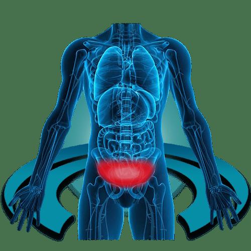 МРТ тазоберденного сустава